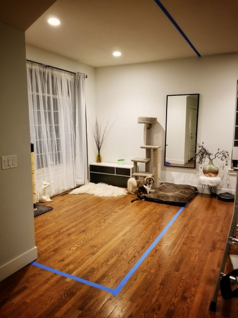 DIYで自宅に作ったオフィスの画像(1枚目)