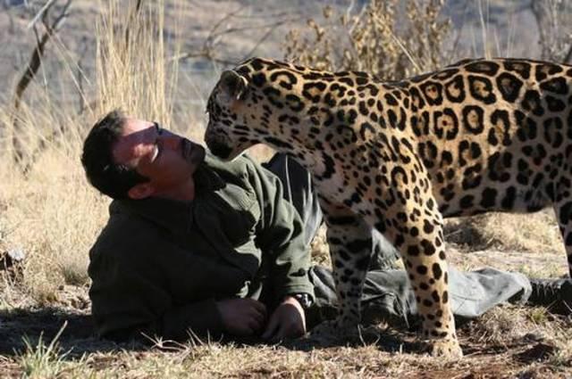 仲が良さそうな動物と人の画像(5枚目)