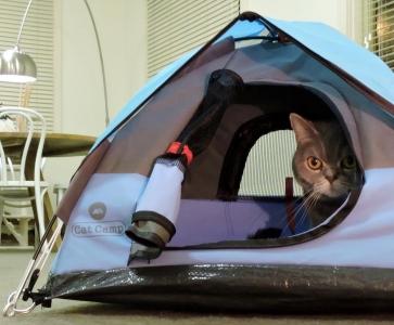ネコ専用テント