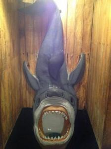 【画像】何だか不安になる無駄にクリエイティブなトイレの数々!!の画像(9枚目)