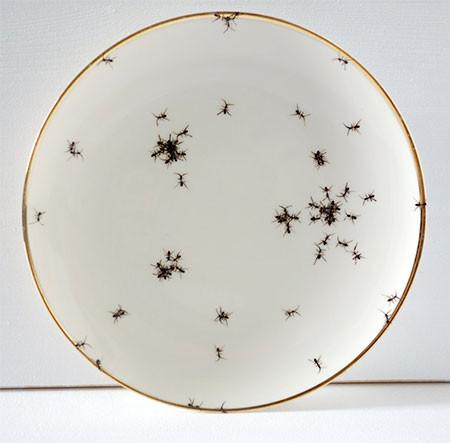 【画像】蟻が這い回っている柄の食器が悪趣味すぎるwwwの画像(3枚目)