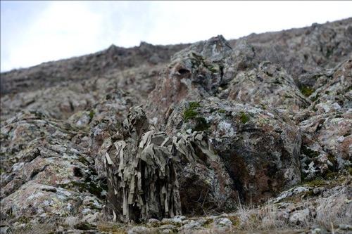 自然に溶け込んだスナイパーの画像(11枚目)