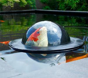 【画像】水面から魚が飛び出して見える「Fish Window」が凄い!!の画像(4枚目)