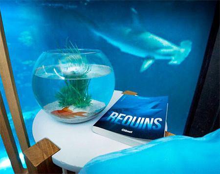 【画像】360度、水に囲まれたお部屋に泊まれるホテルが凄い!!!の画像(6枚目)