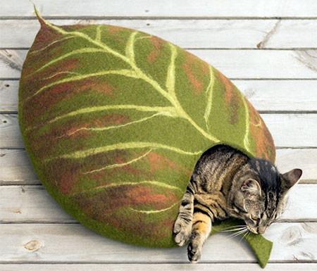 葉っぱのような猫の家の画像(7枚目)