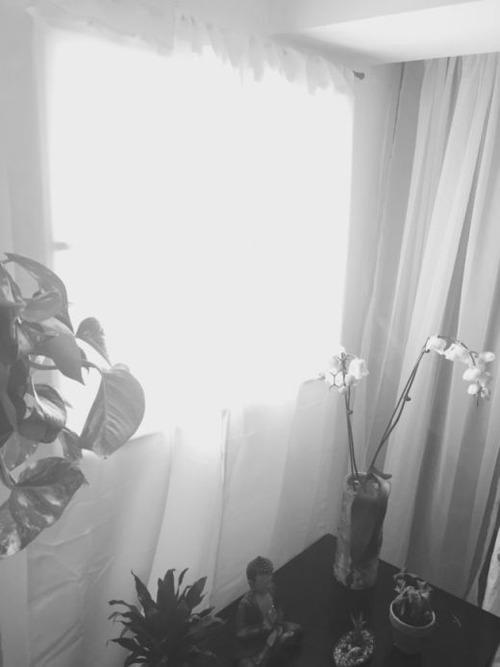 【画像】昼夜逆転の生活が解決!?どこでも付けれる光が入る窓が画期的!!の画像(5枚目)