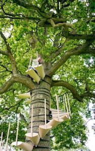 お年寄りでも簡単に木に登れる!木につける階段が面白い!の画像(6枚目)