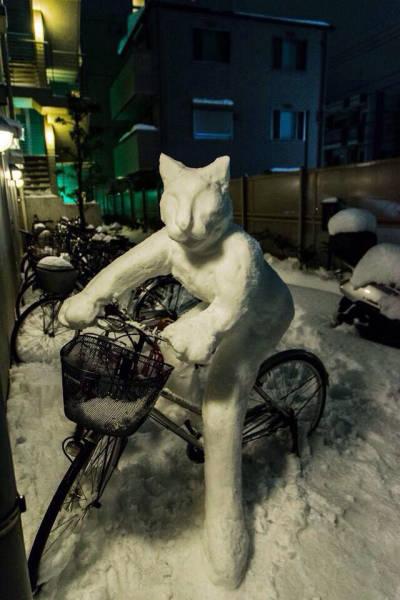 自転車にまつわるちょっと面白ネタ画像の数々!!の画像(25枚目)
