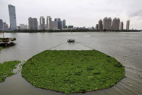 中国の日常生活をとらえた写真がなんとなく感慨深い!の画像(8枚目)