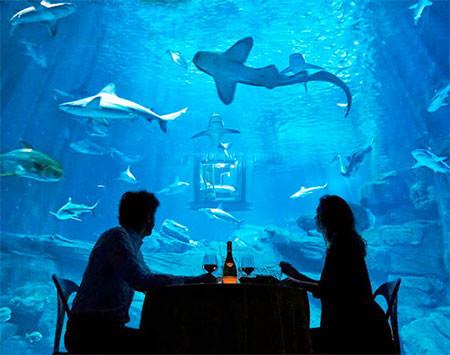 【画像】360度、水に囲まれたお部屋に泊まれるホテルが凄い!!!の画像(4枚目)