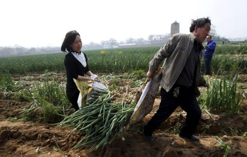 中国の日常生活をとらえた写真がなんとなく感慨深い!の画像(25枚目)