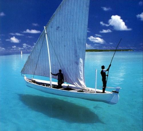 美しく神秘的な水辺の画像(33枚目)