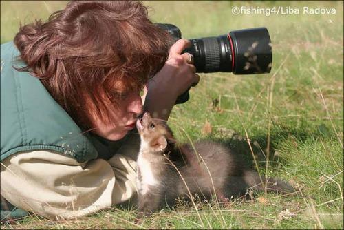 【画像】自然を撮影するカメラマンに興味津々の動物達!!の画像(7枚目)