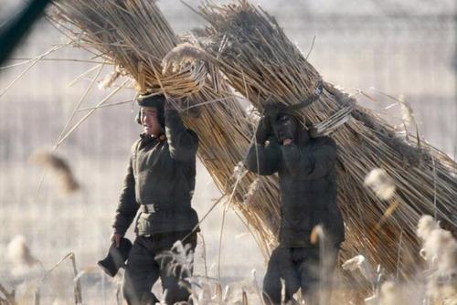 リアル!北朝鮮の日常生活の風景の画像の数々!!の画像(21枚目)