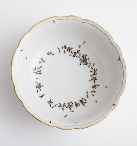 【画像】蟻が這い回っている柄の食器が悪趣味すぎるwwwの画像(14枚目)