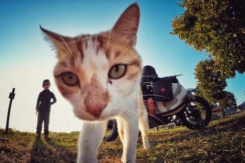 【画像】1台のバイクで家族3人が41カ国を4ヶ月で制覇!!の画像(31枚目)