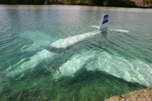 事故=大惨事!笑えるか笑えないか微妙な飛行機事故の画像の数々!!の画像(5枚目)