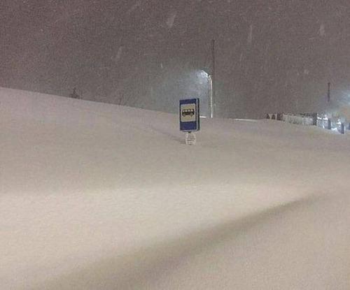 海外の凄まじい冬の寒さの画像(26枚目)