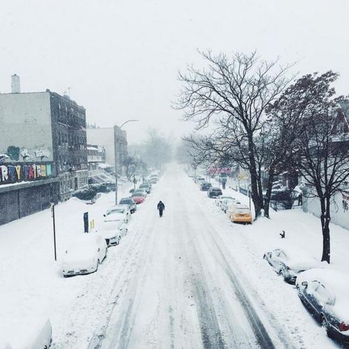 【画像】大雪のニューヨークで日常生活が大変な事になっている様子!の画像(8枚目)