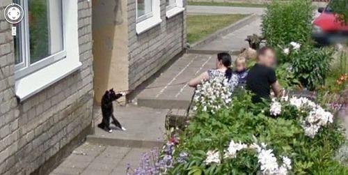 動物たちの驚きの瞬間の画像(9枚目)
