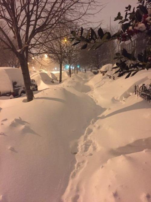 【画像】大雪のニューヨークで日常生活が大変な事になっている様子!の画像(2枚目)