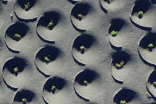 ドローンを使った空撮の画像(12枚目)