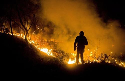 フランスのマルセイユの山火事の画像(5枚目)