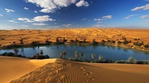 サハラ砂漠にある小さなオアシスが美しすぎて凄い!の画像(2枚目)