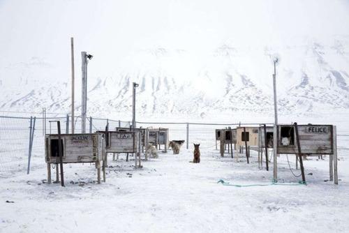 ほぼ世界の最北!極寒の村の風景の画像の数々!!の画像(1枚目)