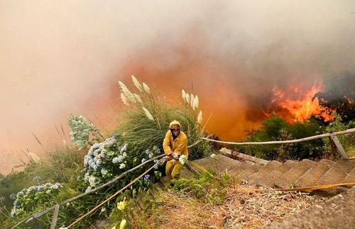 フランスのマルセイユの山火事の画像(2枚目)