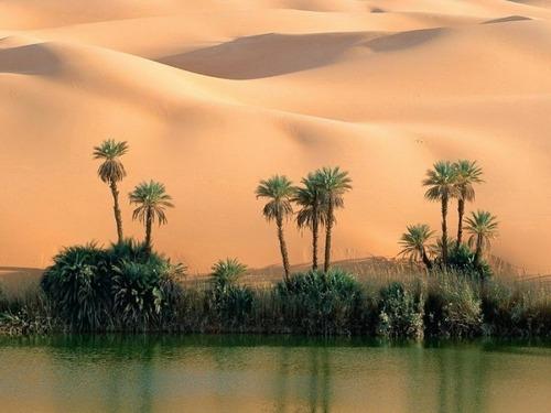 サハラ砂漠にある小さなオアシスが美しすぎて凄い!の画像(6枚目)
