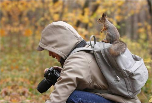 【画像】自然を撮影するカメラマンに興味津々の動物達!!の画像(23枚目)