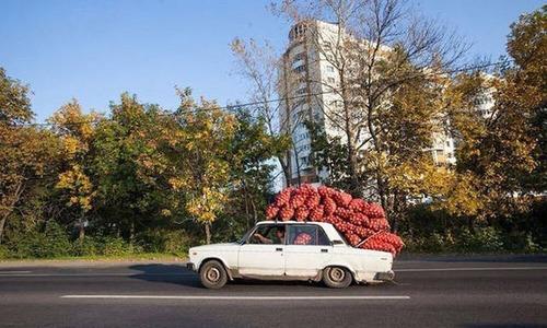 期待を裏切らないロシアの日常風景の画像の数々wwwwの画像(12枚目)