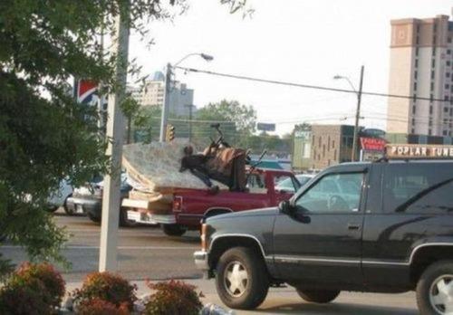 運搬している自動車の画像(11枚目)