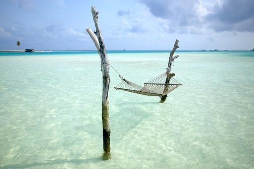 美しく神秘的な水辺の画像(13枚目)