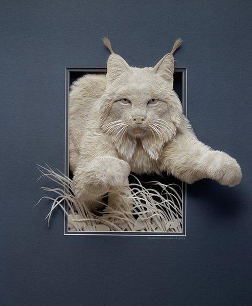 【画像】普通の紙で作る動物のペーパー・カッティング(切り絵)が凄い!!の画像(14枚目)