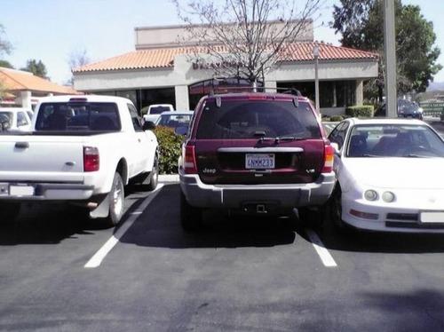 違法駐車に対する制裁の画像(24枚目)