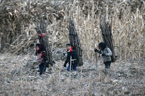 リアル!北朝鮮の日常生活の風景の画像の数々!!の画像(34枚目)