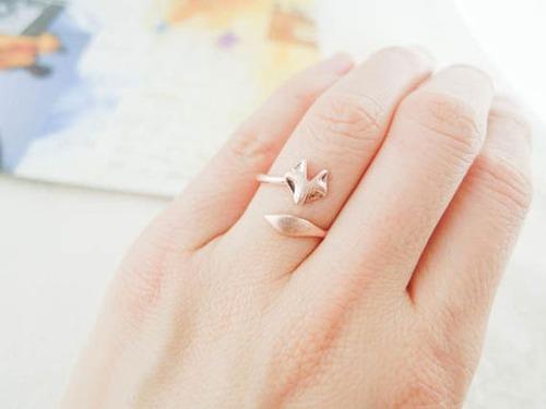 【画像】とりあえず欲しい!ちょっと面白い指輪の数々!!の画像(9枚目)