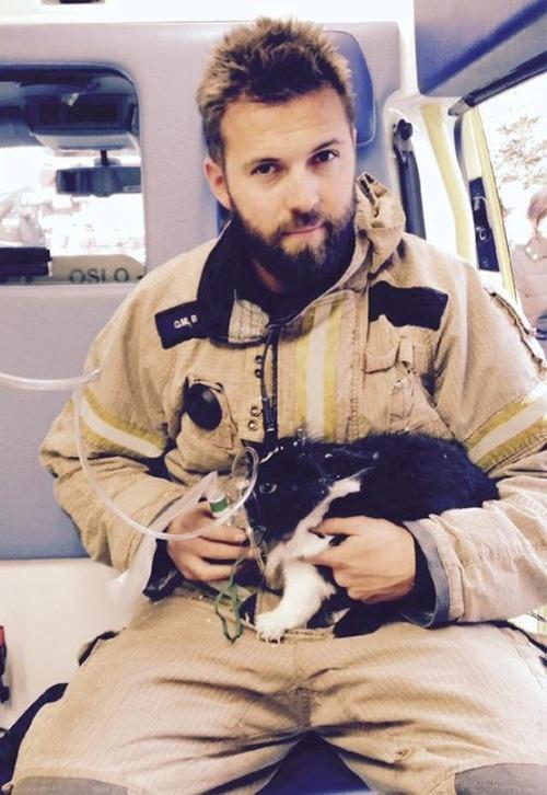 【画像】動物達も本気で助ける!ちょっと癒されるレスキュー隊の仕事の様子!!の画像(8枚目)