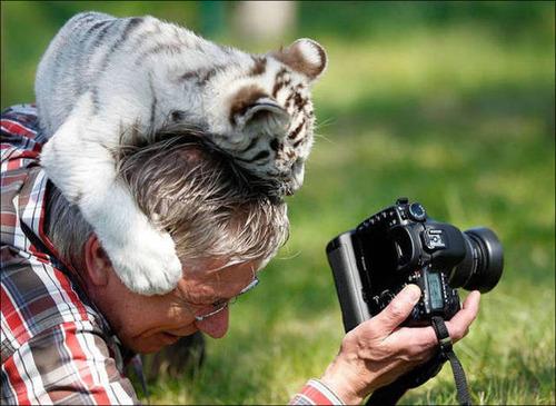 【画像】自然を撮影するカメラマンに興味津々の動物達!!の画像(14枚目)