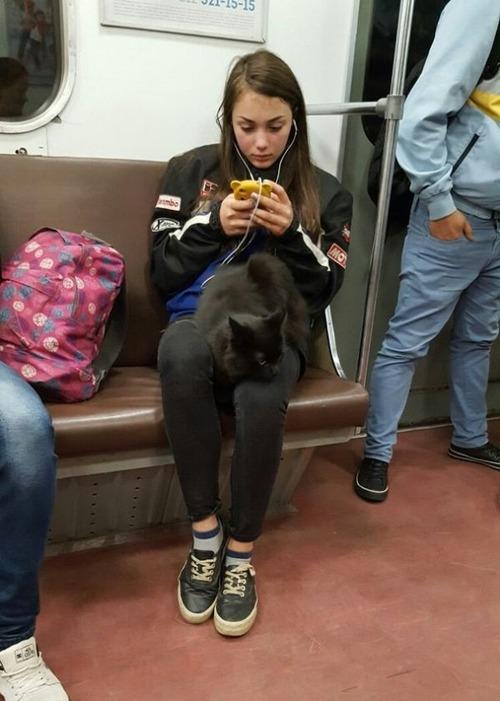 電車や駅で見かけた変った人達の画像(6枚目)