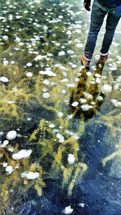 美しく神秘的な水辺の画像(27枚目)