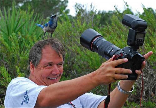 【画像】自然を撮影するカメラマンに興味津々の動物達!!の画像(6枚目)