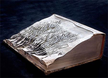 【画像】分厚い本が絶景になる!本を使ったアートが凄い!!の画像(10枚目)