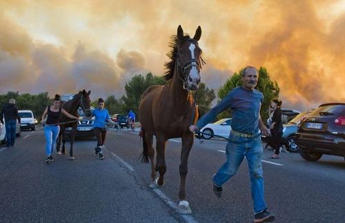 フランスのマルセイユの山火事の画像(23枚目)