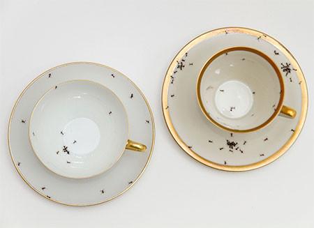 【画像】蟻が這い回っている柄の食器が悪趣味すぎるwwwの画像(8枚目)