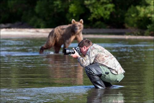 【画像】自然を撮影するカメラマンに興味津々の動物達!!の画像(15枚目)