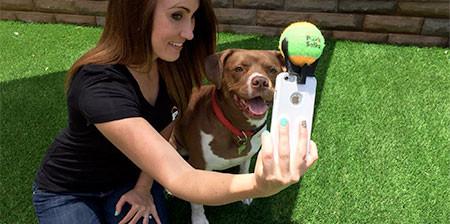 ワンちゃんニッコリ!ペットの犬をほぼ確実に可愛く撮影できるガジェット!!の画像(1枚目)