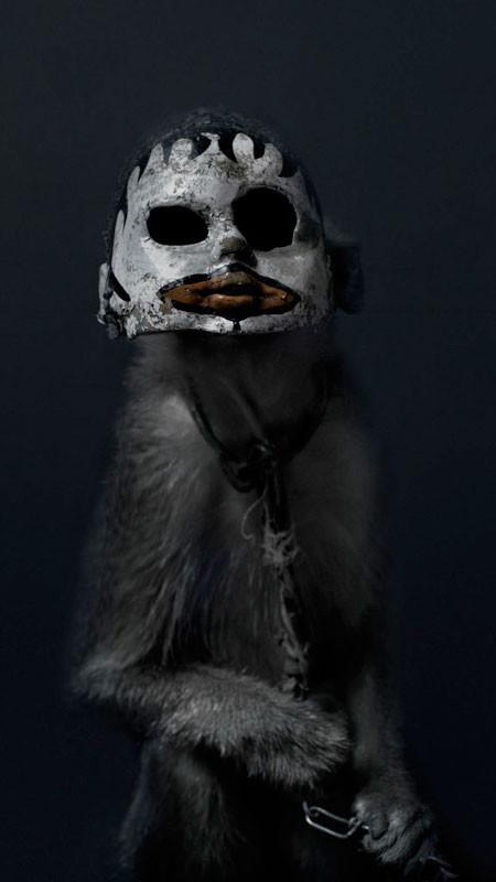 【画像】サルにマスクを被せたら凄まじく怖くなったwwwの画像(9枚目)
